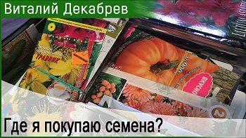 Где я покупаю семена?