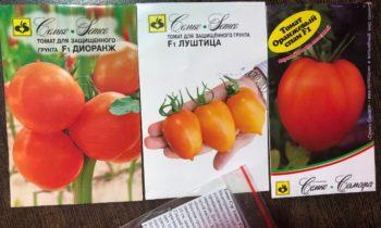 Какие сорта и гибриды томатов посею в этом сезоне