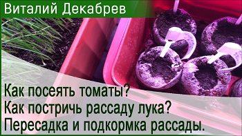 Дачные сезоны с Виталием Декабревым (1 неделя марта)