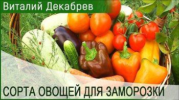 Сорта овощей для заморозки