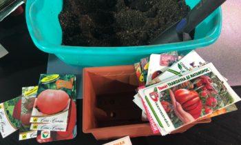Сеем томаты для открытого грунта. Садовый дневник 20 марта 2018.