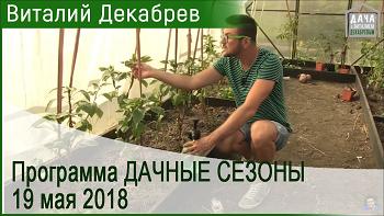 Дачные сезоны с Виталием Декабревым (19 мая 2018)