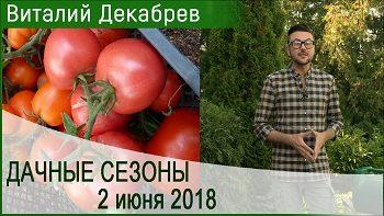 Дачные сезоны с Виталием Декабревым (2 июня 2018)