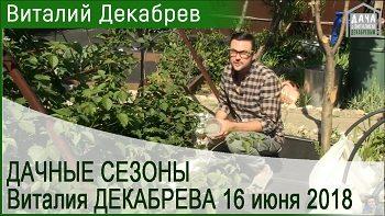 Дачные сезоны с Виталием Декабревым (16 июня 2018)