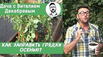 Как заправить грядки осенью и получить богатый урожай?
