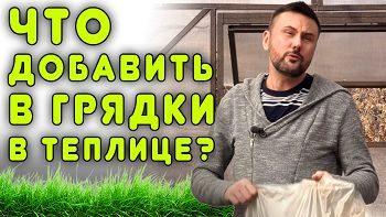 Что добавить в грядки в теплице? Удобряем почву