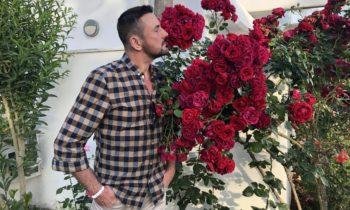 Заставляем розы пышно цвести. Как обрезать розы?